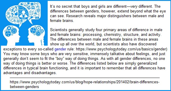 Brain differences between males and females