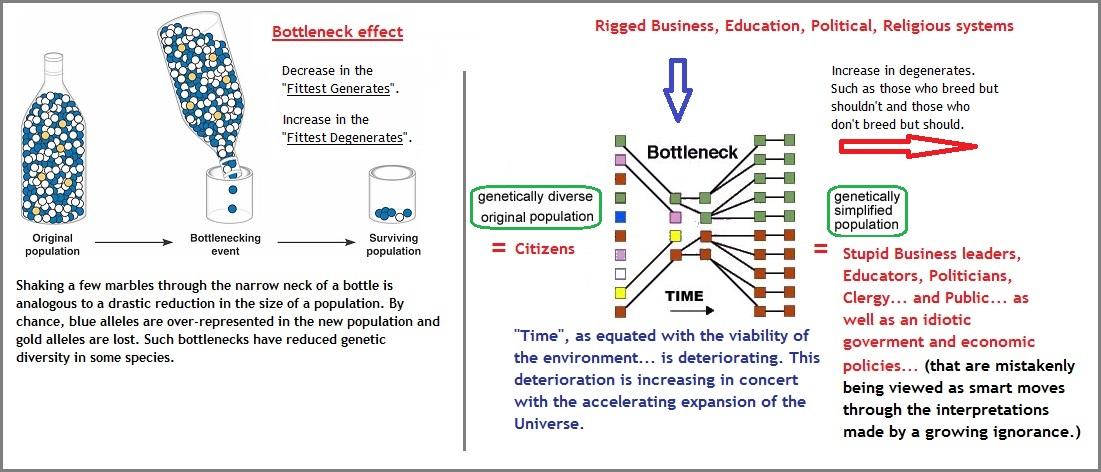 bottleneck effect (174K)