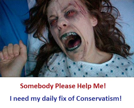A Conservative's profile image 3