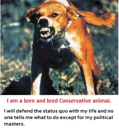 A rabid Conservative image 2