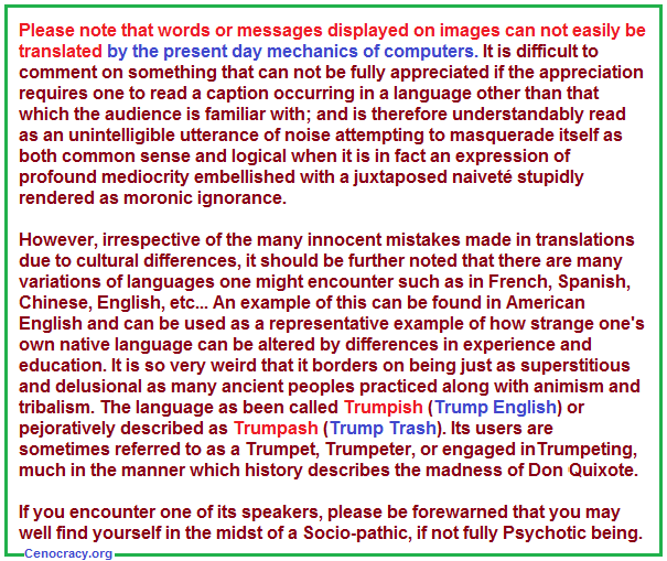 Commentary on difficulty in translating images