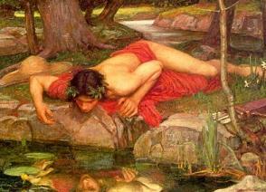 Narcissus (16K)