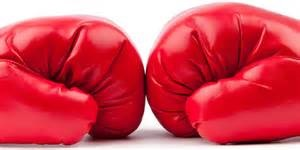 Boxing gloves look like the human brain