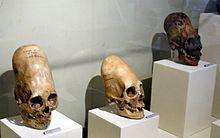 Paracas Skulls (6K)