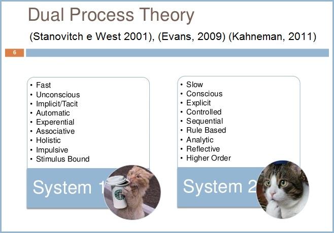 Dual Process Theory (73K)