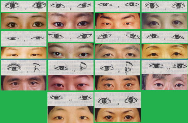 Examples of asian eye types